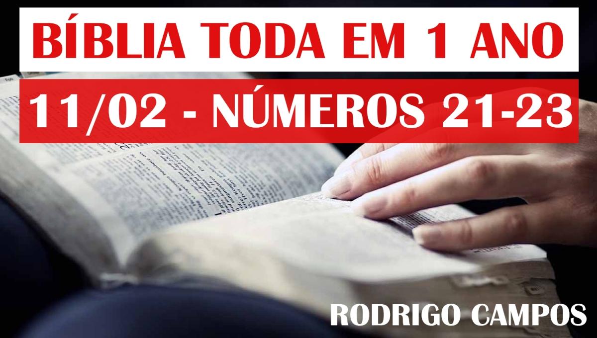 Bíblia Toda em 1 Ano – Dia 11/02 – Números 21-23 – NVI